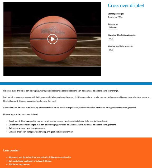 basketbal vaardigheid